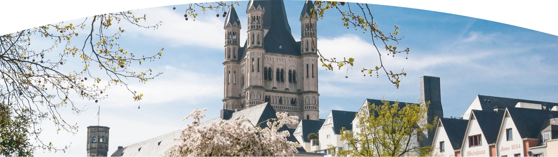 Cathedral of Cologne seen from a street in spring
